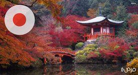 دليلك الشامل للدراسة في اليابان!