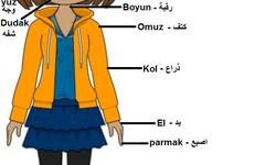 تعلم اللغة التركية | أجزاء جسم الإنسان