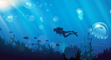 العلوم البحرية - Marine Science