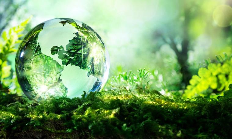 الاهتمام بالبيئة
