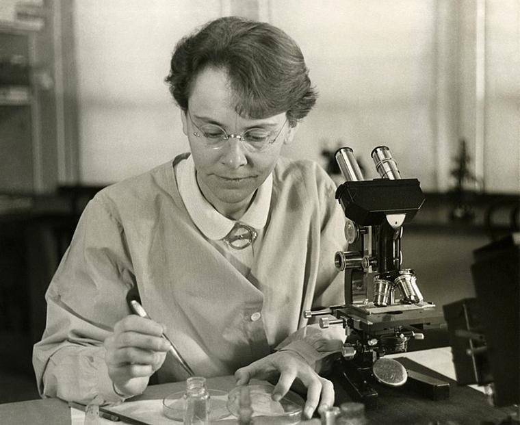 باربارا ماكلنتوك، Barbara McClintock